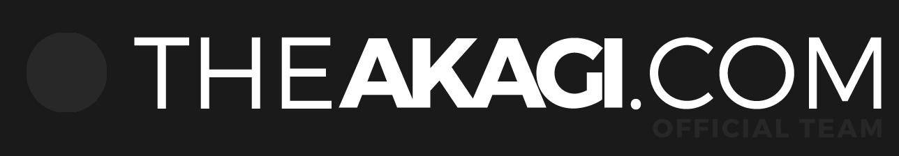 Stickers THEAKAGI.COM Gris