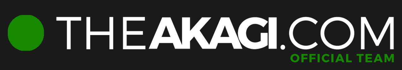 Stickers THEAKAGI.COM Vert
